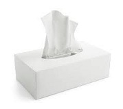 Facial Tissues 24x100